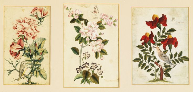 Three bird and flower studies, one signed Muhammad Hadi, dated 1167 AH/1753 AD, Persia, Qajar, 18th/19th century | Lot | Sotheby's