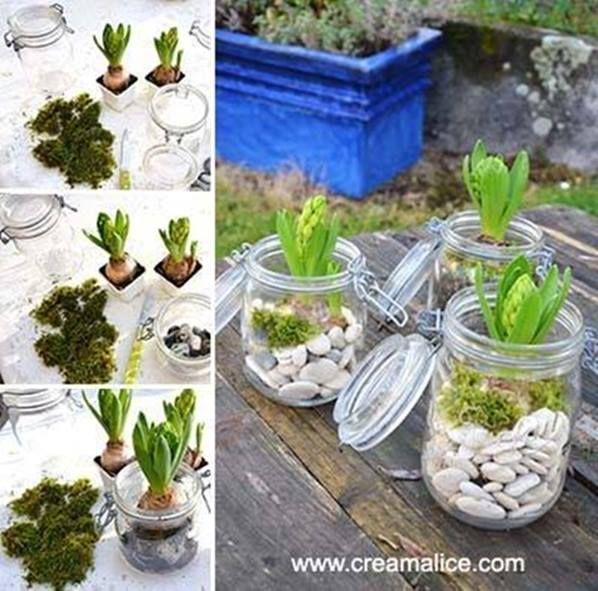 Ook leuk om zelf te maken met een paar oude (weck)potten en wat plantjes er in (ipv hyacinten kan je er natuurlijk ook wat anders in zetten )