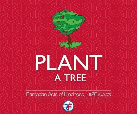 Day 6 of the Acts of Kindness, Plant a Tree. Help clean the air and conserve energy by going out and planting a tree today. #ZF30Acts