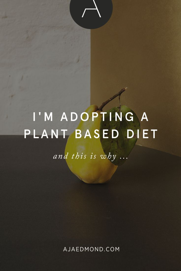 I'm adopting a plant-based diet and this is why ... read at ajaedmond.com » I've been researching diet and nutrition for a full year as part of my desire to enhance the Health element of my Wheel of Life. I believe that being your best self means managing the different themes in your life and that Sleep, Exercise, and Nutrition are foundational elements upon which every other theme is built upon.
