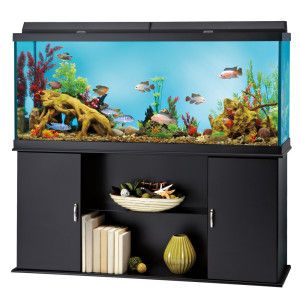 Top fin 120 gallon aquarium stand aquariums for Petsmart fish tank stand