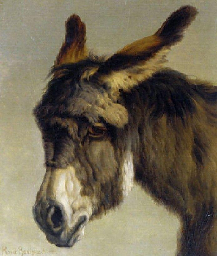 Rosa Bonheur, Hoofd van een ezel, 1881, olieverf op paneel, 30.4 x 24.8 cm, privécollectie
