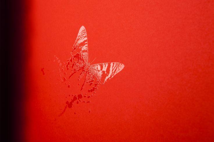 Particolare: Farfalla