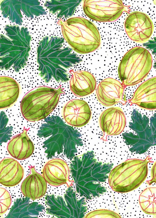 Gooseberry pattern for textile or wallpaper. Made with gouache, ink and oil pastels. #goosberry #pattern #textile #wallpaper #art #crafts #textiles #design #summer #fruit #fruits #berries #green #fresh #tasty #dots #leaves #leaf