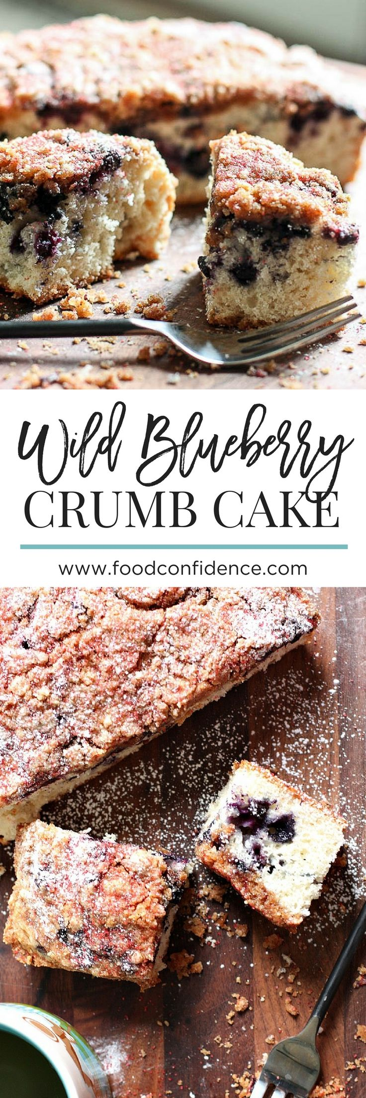 This Wild Blueberry Crumb Cake is super easy to make, but is impressive enough to serve as a special occasion breakfast or dessert! Wild blueberries sneak some antioxidants in there, too!
