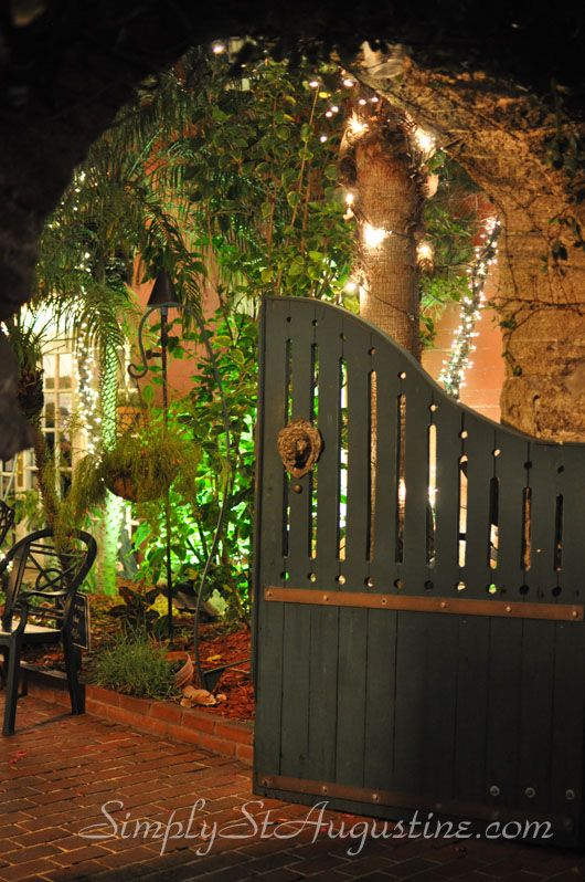 The entrance to Harry's is enchanting at night!  {St. Augustine Staycation}