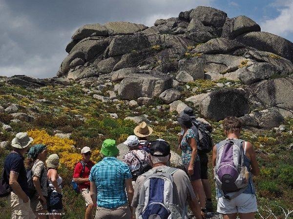 Zoals beloofd de wandeling die ik gisteren 13 juni maakte. Leen van Melle is, zoals vaak, de gids en laat ons prachtige plekken zien en bijna onzichtbare paadjes volgen.De groep