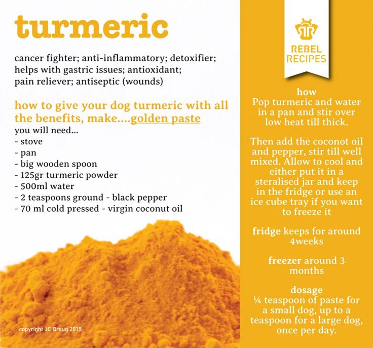 tumeric - benefits for your pets