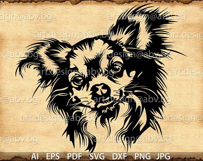 Vector Chihuahua Long Hair Dog Svg Ai Png Pdf Eps Dxf Etsy Chihuahua Art Animal Stencil Dog Silhouette