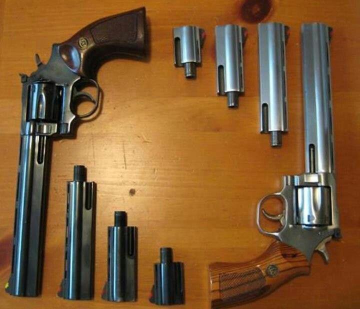 Dan Wesson firearms.