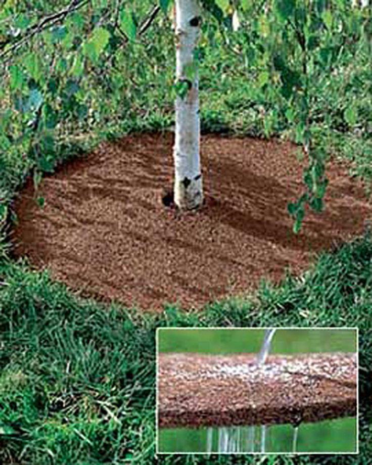 Coco Fiber Mulch Tree Rings Gardener's Supply