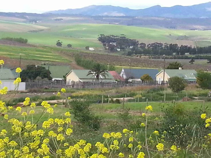 ON THE SLOPES OF THE HOWHOEK MOUNTAINS - 23 km from Hermanus and 11km from Arabella Golf Course - you find the sleepy rustic village of Botrivier.