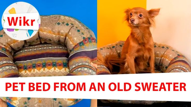 Pet Bed From an Old Sweater - Life Hacks and Tricks
