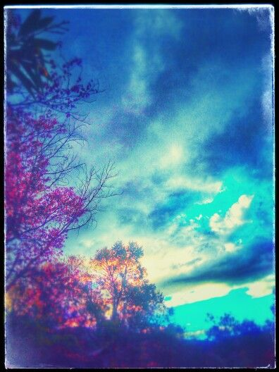 Nubes en arboles