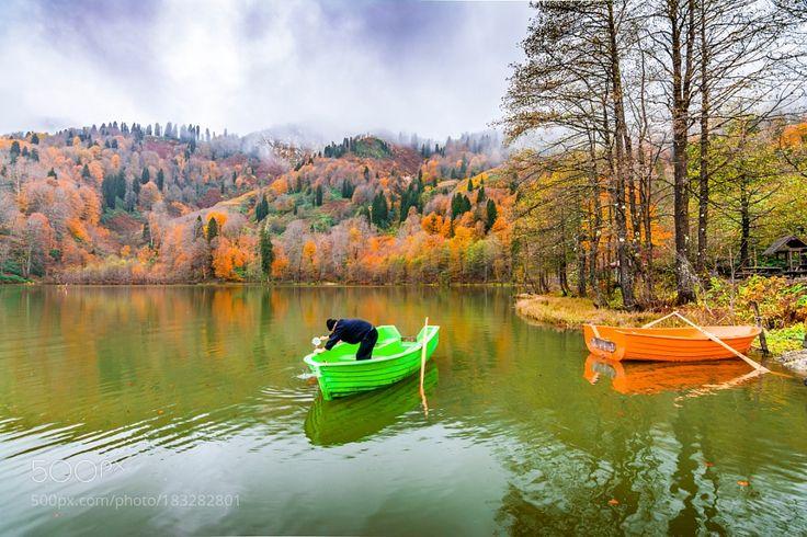 Autumn colours in Turkey by nejdetduzen
