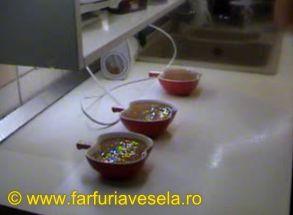 Farfuria vesela: Înghețată de ciocolată