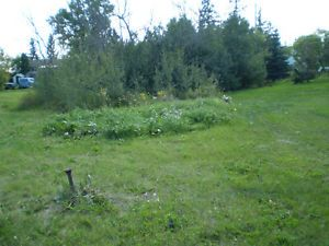 Serviced Residential Lot In Ryley AB