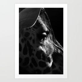 THREE PENTA THREEPENTA  giraff Art Print
