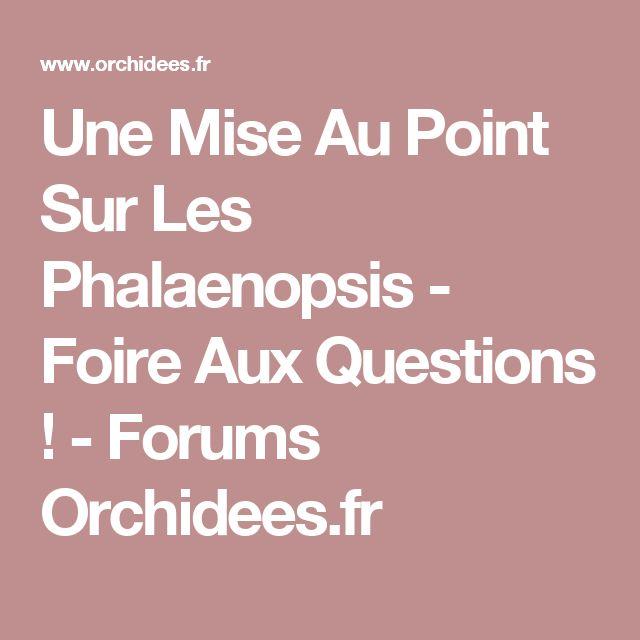 Une Mise Au Point Sur Les Phalaenopsis - Foire Aux Questions ! - Forums Orchidees.fr
