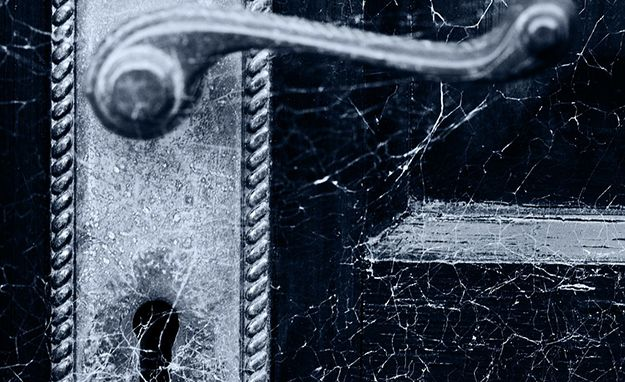 Les 104 meilleures images du tableau huiles essentielles sur pinterest huiles essentielles - Lutter contre les araignees ...