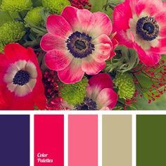 Contrasting Palettes | Page 4 of 82 | Color Palette Ideas