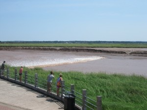 The Petitcodiac River is home to a rare phenomenon called a Tidal Bore. It runs into the Bay of Fundy, but twice a day, as a result of the extreme tides, a wave on the leading edge of the incoming tide travels up the river against the natural current.