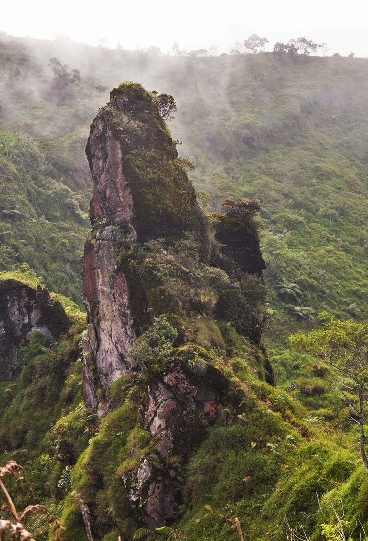 Batu Menyerupai Menhir di Pakuwaja