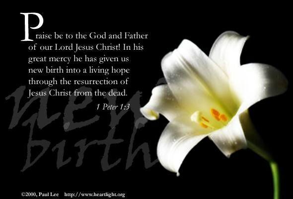 1 Peter 1 : 3