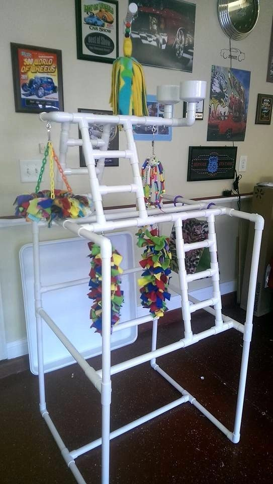 PVC Parrot Play Stand - Our LARGEST FLOOR PERCH *FREE SHIPPING* Birds Love Them in Pet Supplies, Bird Supplies, Perches | eBay