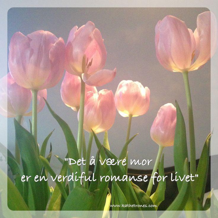 http://www.kathetrones.com/#!4-Sannheter-til-mor-om-kjærlighet/c1uf8/56bdb0440cf2fd311ce08564