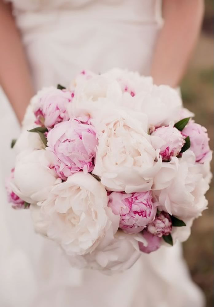 Pink and white peony flowers make for a beautiful bridal bouquet! Would you choose any of these 15 Of The Prettiest Pink Peonies For Your Wedding? • Wedding Ideas magazine