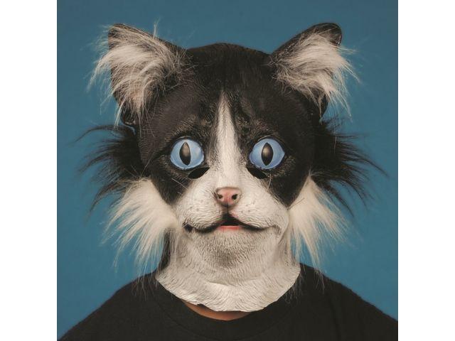 Best 25+ Animal Head Masks Ideas On Pinterest