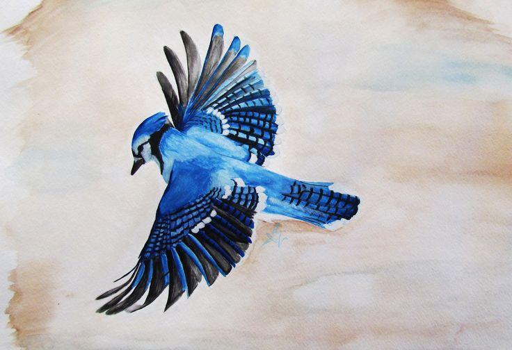 Blue Jay by MoralChaos on deviantART