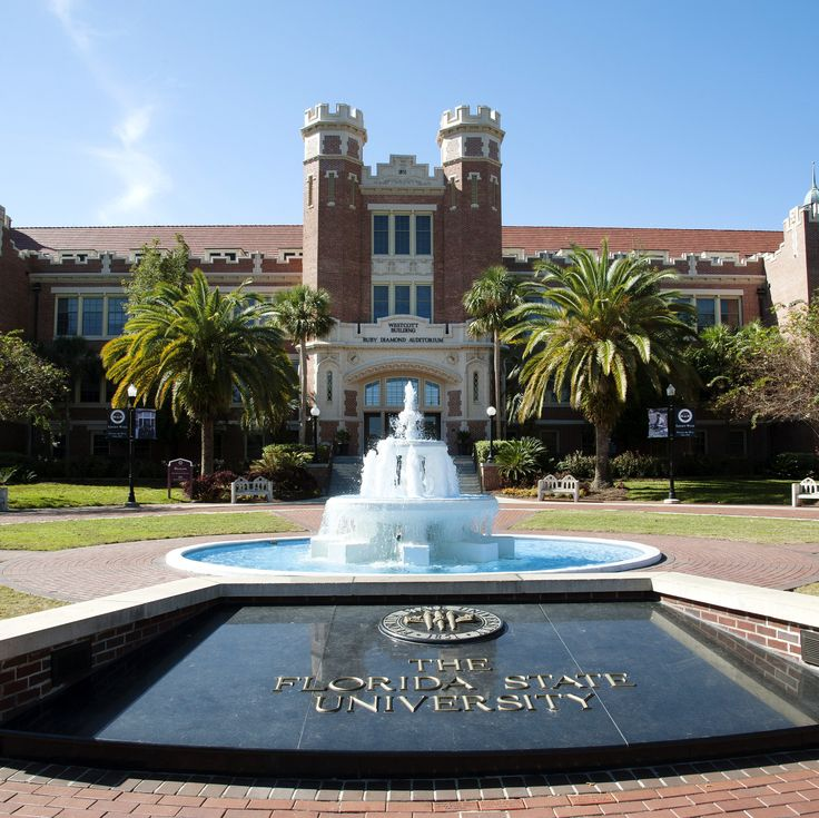 Hand, foot, and mouth disease is spreading at Florida State University. Outbreaks of the viral infection—which can cause a fever, rash, sores, and mouth blisters—typically occur in daycare centers. | Health.com