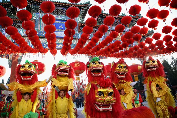 Chinese New Year starts on 31st January.  Many Chinese New Year traditions have survived for centuries and are still observed today. See a day-by-day account of traditions meant to bring luck during the 15-day Chinese New Year celebration!