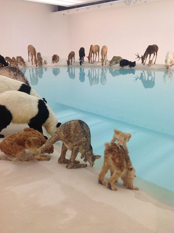 Animals Drink From a Pool at Sculptures by Cai Guo-Qiang