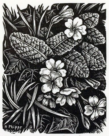 A Primrose Bank by Howard Phipps