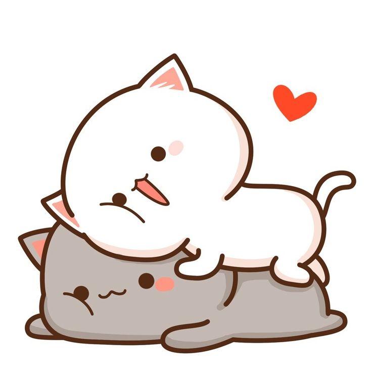 тебя картинки кавай кошки известно