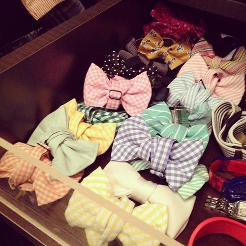 11 Best Untied Bow Ties Images On Pinterest Bowties Bow