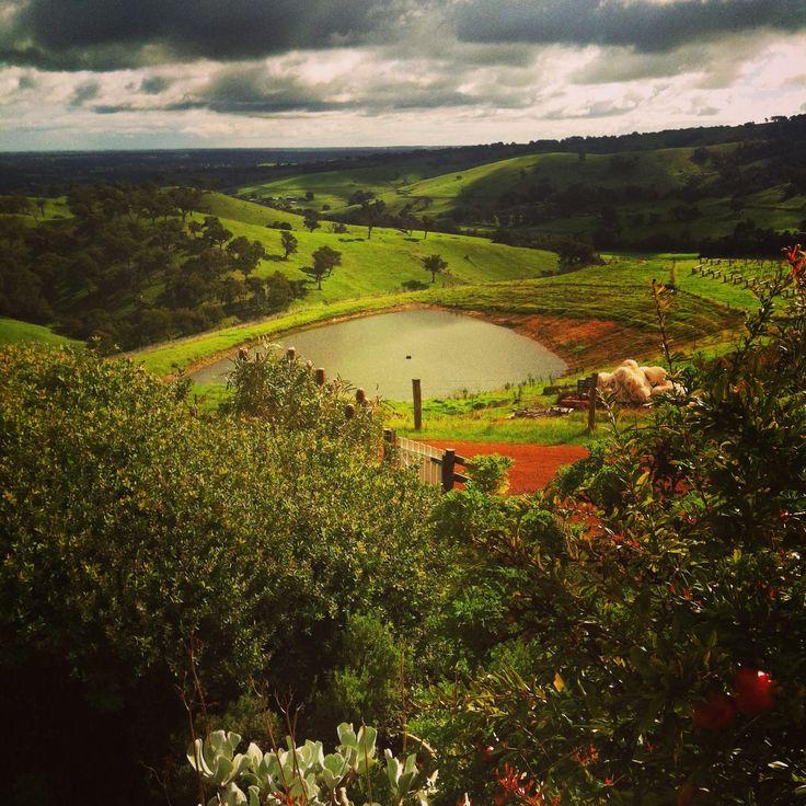 Winery Region - Margaret River WA