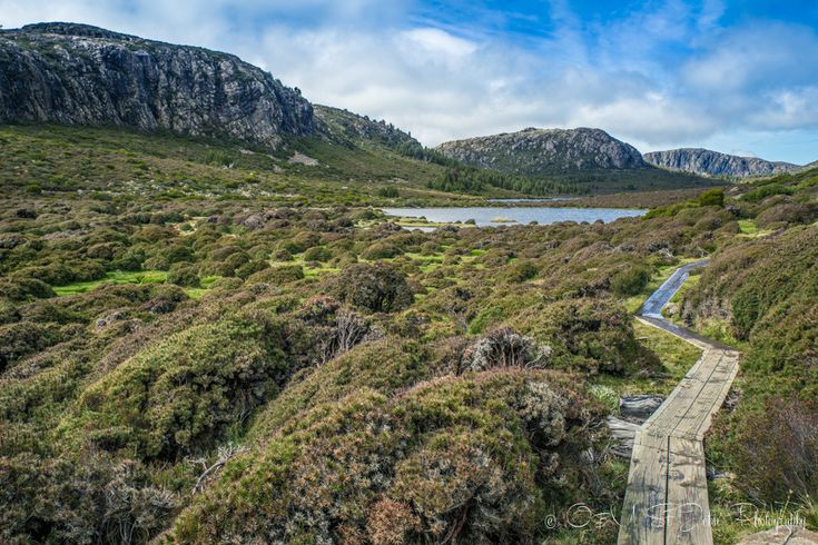 Drink Tea and Travel | 10 Unforgettable Experiences in #Tasmania | http://www.drinkteatravel.com