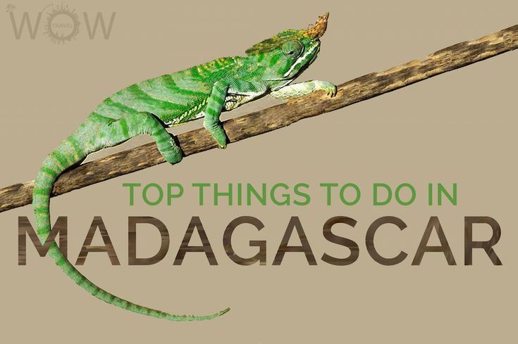Top 8 Things To Do In Madagascar - WOW TRAVEL