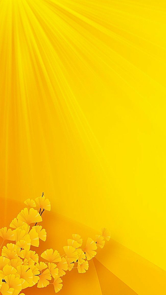 Pin By Guddi On Cicek Panolarim Yellow Flower Wallpaper Flower Background Wallpaper Iphone Wallpaper Yellow