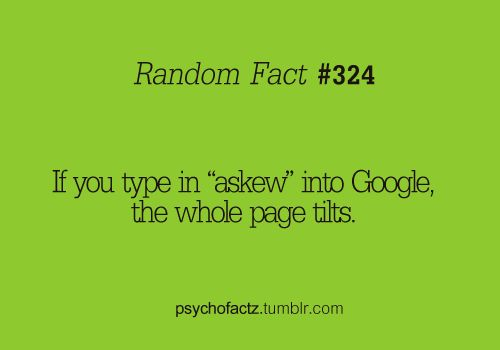 askew: Random Funny, Funny Things, Google, Awesome, Totally Work, Barrels Rolls, Fun Facts, Random Facts, It Works