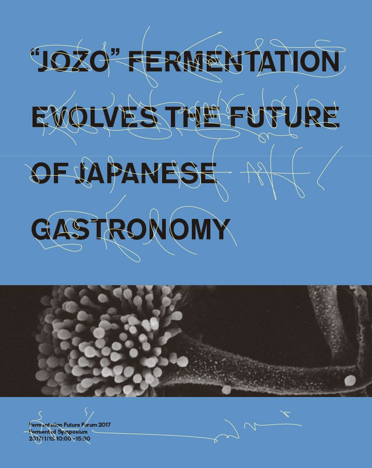 Fermentation Future Forum 2017 / Naonori Yago / 矢後直規