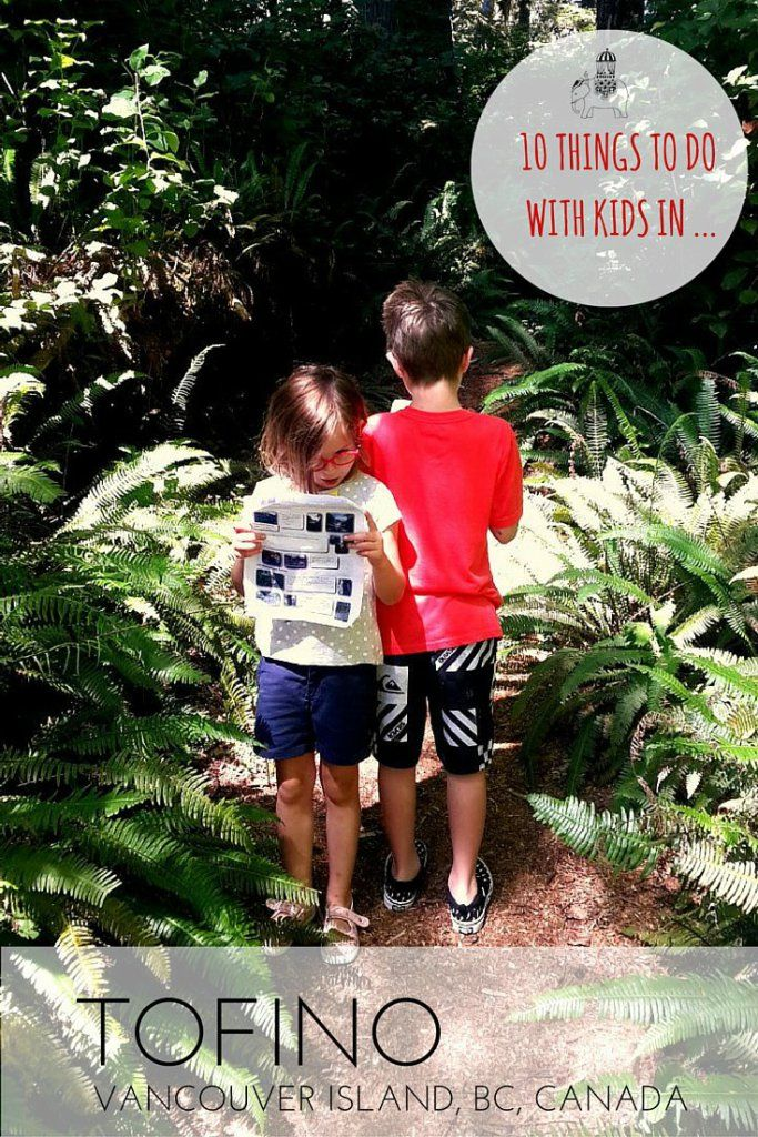 10 Things to Do with Kids in Tofino, Vancouver Island, British Columbia, Canada