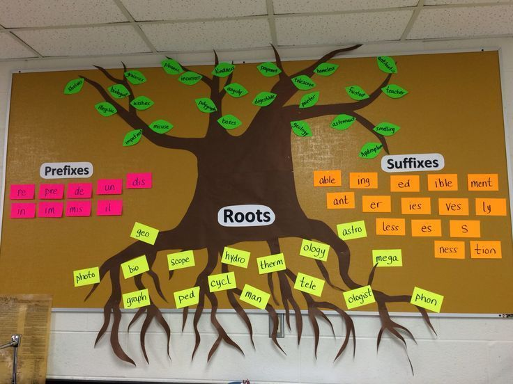 This board helps my students remember some of the word parts we have highlighted throughout the year. Greek and Latin word parts are the toughest (we put those in the root section), but once they master them, they can continuously add examples (leaves) throughout the year seeing their vocabulary and the tree get thicker and thicker!