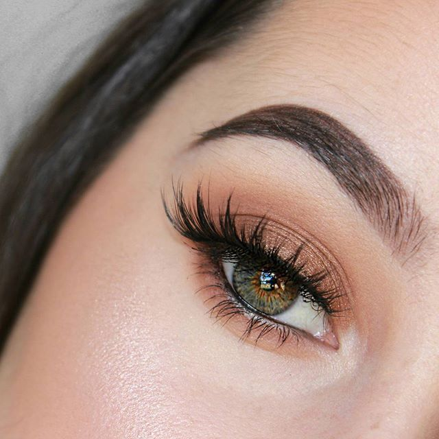Don't forget to check out my new tutorial!! link in bio   @anastasiabeverlyhills ebony #dipbrow  @toofaced Sweet Peach Palette @houseoflashes Iconic  #makeup…