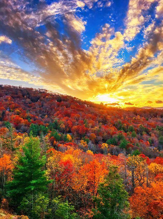 25 Best Ideas About Fall Landscape On Pinterest
