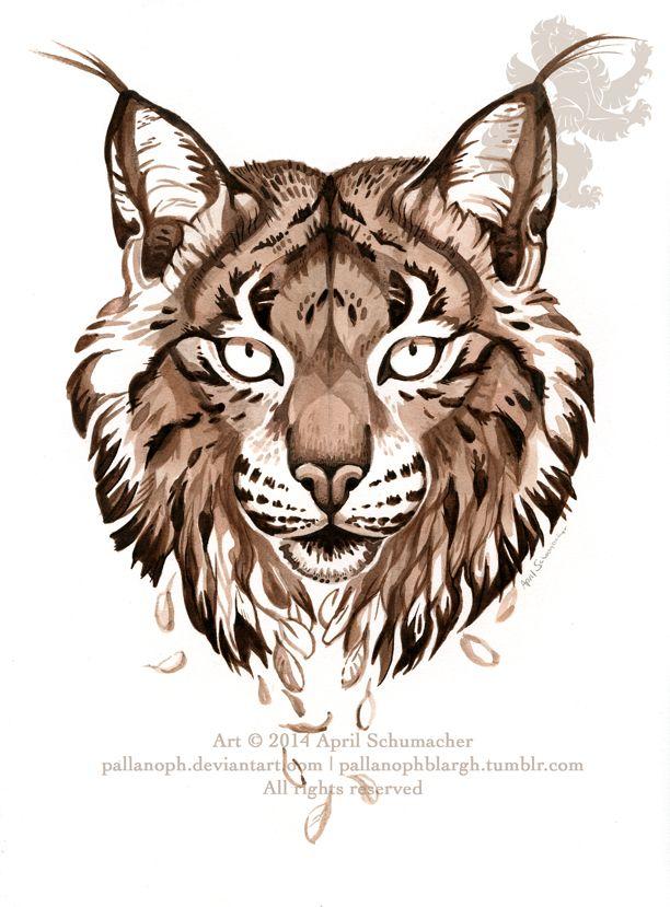 M s de 1000 im genes sobre drawing painting en - Lynx architecture ...